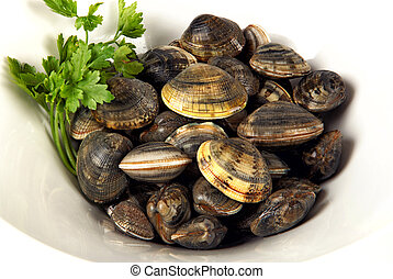White bowl of clams  with parsley on white background
