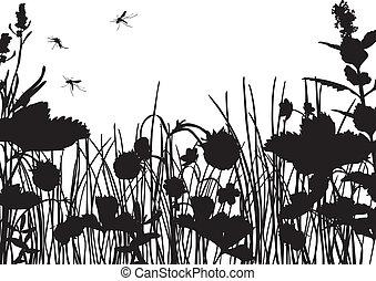 Strawberry field silhouette