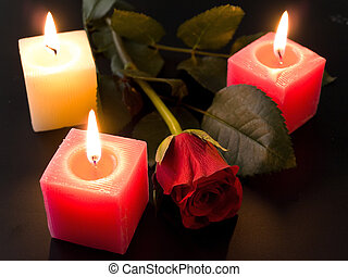 red roses and candles in