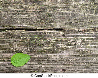 old wooden backgrounds - old wooden backgrouns with single...