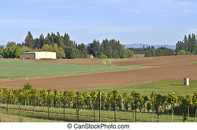 Fertile field in rural Oregon.