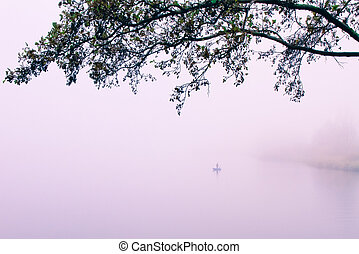 lake bank - a foggy lake on a november morning