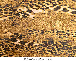 leopard background - Photo of the brown wild leopard...