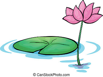 A waterlily flower - Illustration of a waterlily flower on a...