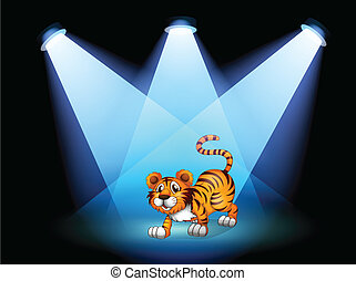 A tiger at the stage with spotlights