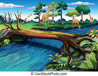 A flowing river at the forest - Illustration of a flowing...