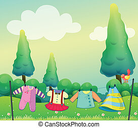 Hanging clothes near the pine trees