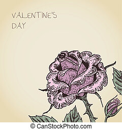 valentine card with rose flower