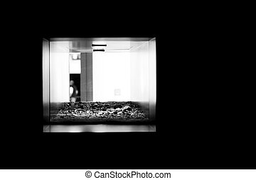 Terrarium - The photograph of a terrarium in a room wall...