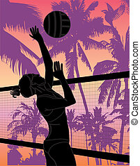 pacific ocean beach volley vector art