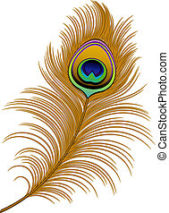 Peacock Feather over white. EPS 10, AI, JPEG