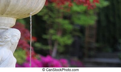 Water Fountain in Garden Springtime - Frontyard Garden...