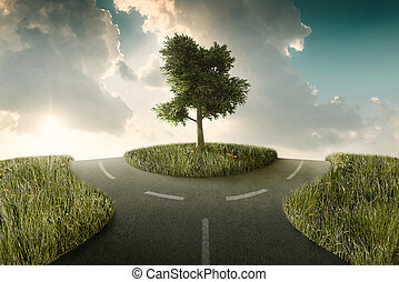 Crossroad - Road bifurcation with tree beetwin in a...