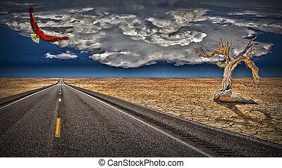Desert wilds road