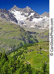 Swiss alps - Beautiful mountain Ober Gabelhorn - Swiss alps