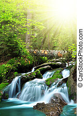 Waterfall in National park Sumava Czech Republic Europe