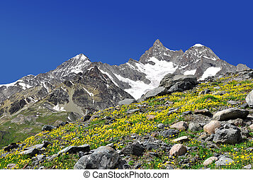 Swiss alps - Beautiful mountain Ober Gabelhorn - Swiss alps...
