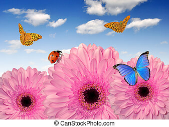 pink gerberas with butterflies and ladybugs
