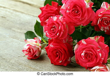 flowers pink roses