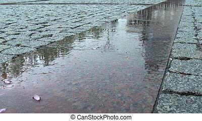Wet reflective pavement in rain