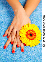 manicure on hands