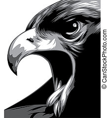 head of eagle in black and white isolated on the white...