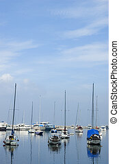 Sailboats docked in Manila Yatch Club, Philippines