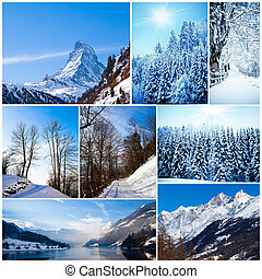 Winter collage. collection of cold weather landscapes with...