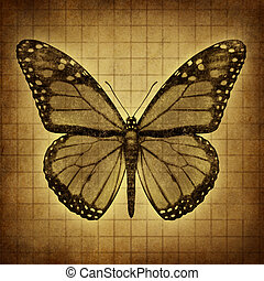 Butterfly Grunge texture - Monarch Butterfly on an old...