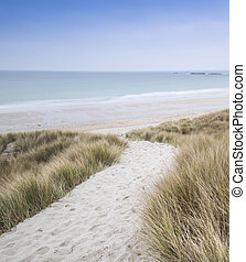 Sandy path leads down through dunes to beautiful golden...