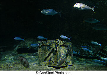 Underwater Treasure - Underwater treasure chest box site on...