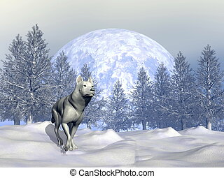 Wolf in winter - 3D render - White wolf walking in the snowy...