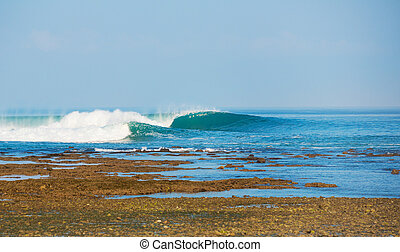 Perfect Surfing Wave on Tropical Island