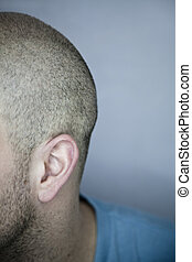 Back of a Shaved Head (ear detail) - Back of a Shaved Head...