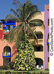 Tropical resort facade with palm tree in Bucerias, Nayarit,...