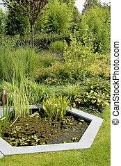 Pond in a lush garden