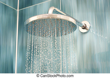 ducha, cabeza