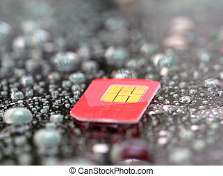 sim card - Mobil sim card on wated drop background