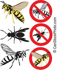 wasp - warning signs - parasitic wasps or preys, european...