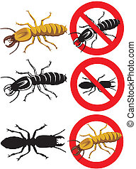 termite - warning signs - social insects, wood insect,