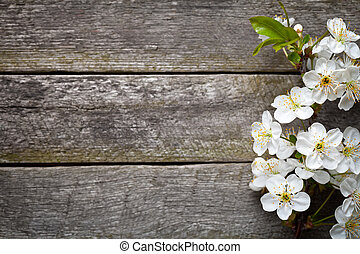 Spring Flowers - Spring flowers on wood background Cherry...
