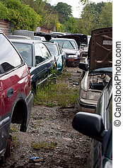 Cars in the Junk Yard - View of the rows of old junked cars...