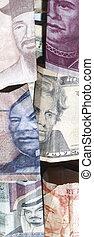 extranjero, dinero