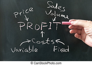 Business profit concept - Hand writing business profit...