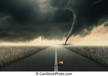 Rose and twister - The yellow rose on road awaiting the...
