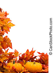Fall Harvest Border - Fall leaves with pumpkin on white...