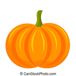 Pumpkin fruit over white Vector illustration