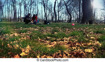 Happy family at picnic, time lapse