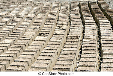 Mud Bricks - Mud bricks lined up to dry under the desert sun...