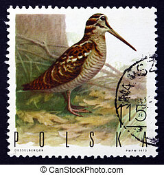 Postage stamp Poland 1970 Woodcock, Game Bird - POLAND -...